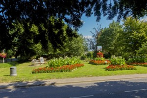 Filby In Bloom
